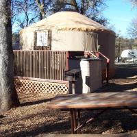 Lake of the Springs Camping Resort Yurt 1