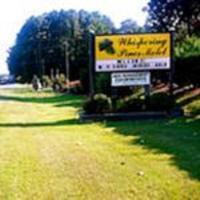 The Whispering Pines Motel- Whitestone