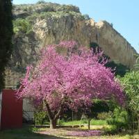 Casa Rural el Amparo