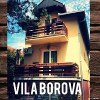 Apartments Vila Borova