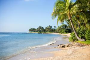 Image of Kahala Beach
