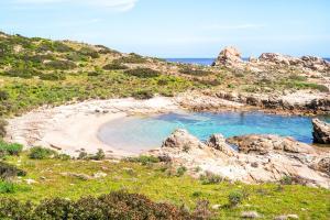 Image of Cala Sabina Beach