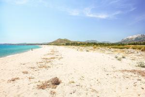 Image of Su Tiriarzu Beach