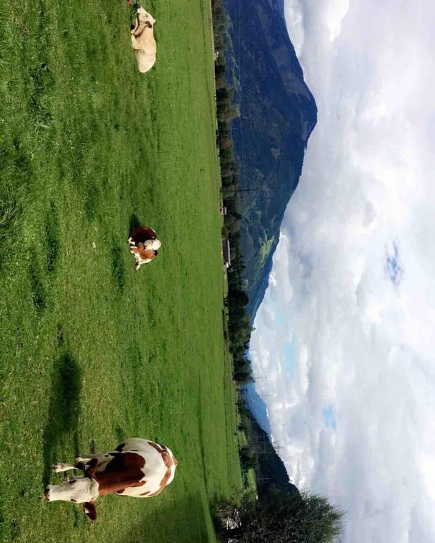 Haus Am See Zell Am See Austria Bookingcom: Resort Tauern Spa, Kaprun, Austria