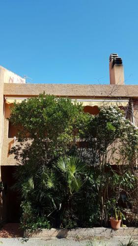 Pepito House