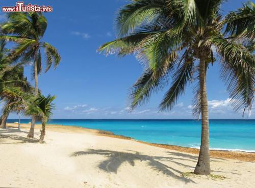 Spiaggia a 30 metri da Villa Morua.
