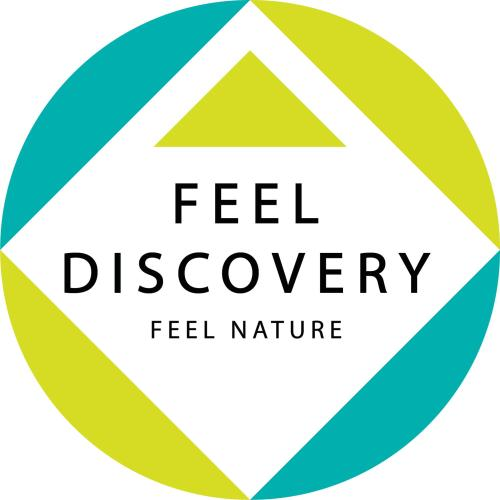 Feel Discovery